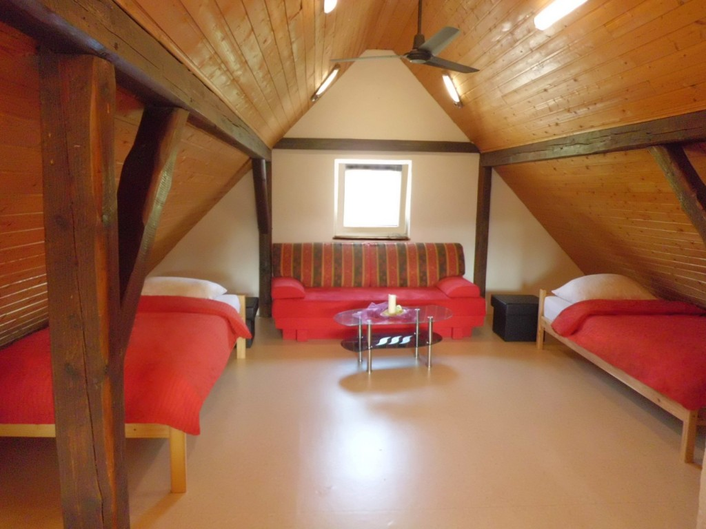 Wohn-Schlafzimmer_2g