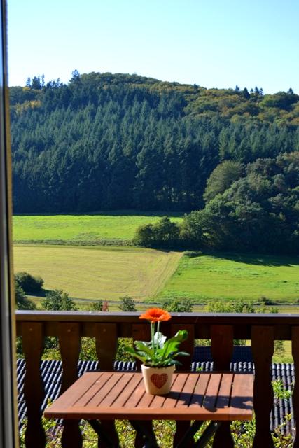 Balkon mit Landschaftspanorama, FeWo Aartalsee